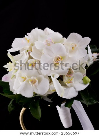 beautiful bouquet of orchid flowers
