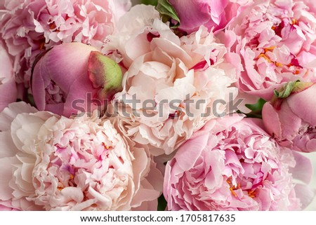 Photo of  Beautiful bouquet of pink peonies.Floral shop concept . Beautiful fresh cut bouquet. Flowers delivery
