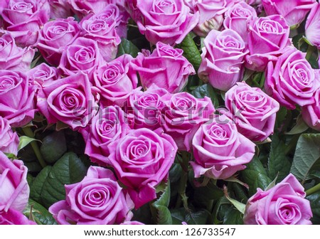 Beautiful bouquet of pink roses.