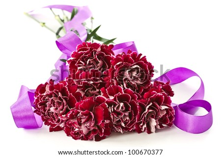 beautiful bouquet of red carnations on a white background