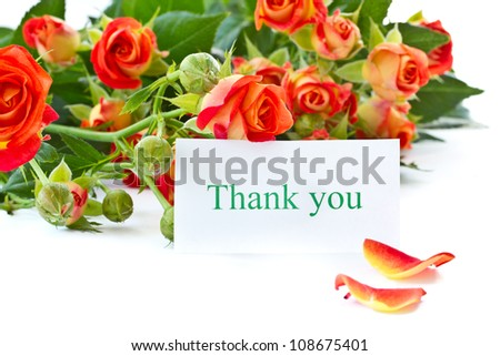 beautiful bouquet of red roses on a white background