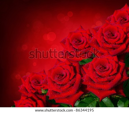 beautiful bouquet of red roses with copy-space