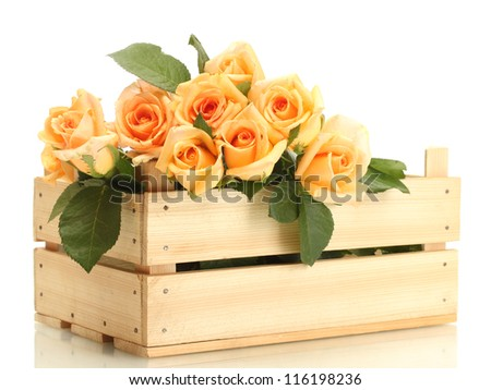 beautiful bouquet of roses in wooden box isolated on white