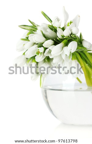 beautiful bouquet of snowdrops in transparent vase isolated on white