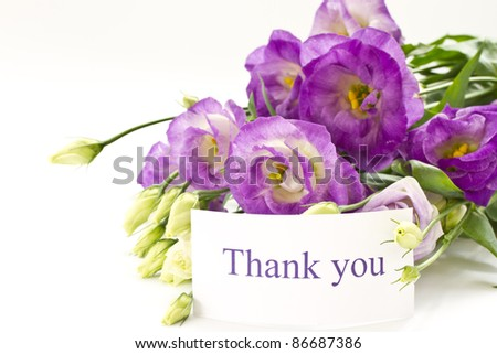 beautiful bouquet of violet  lisianthus on a white background - stock photo