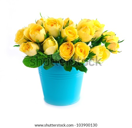 Beautiful bouquet of yellow roses in a blue bucket