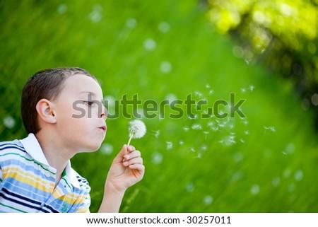 Beautiful boy blowing dandelion seeds
