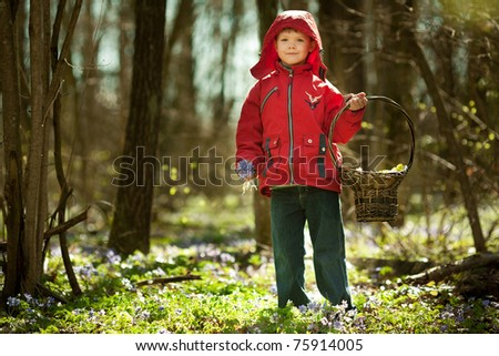 beautiful boy in forest with basket