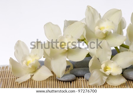 Beautiful branch white orchid with stones on mat