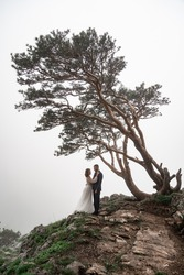 beautiful bride and groom stand on a cliff in the mountains under a tree in the fog. honeymoon. mountain tourist routes. organization of holidays and tours in nature. wedding fashion.