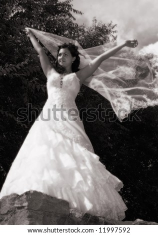 Beautiful bride with a veil on a parapet of the Ob river, summer, Siberia
