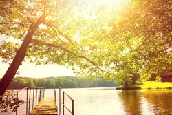 Beautiful bright day summer scenery. Lake and trees.