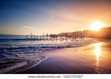 Beautiful bright purple purple sunset on the ocean, sandy beach, waves and glare of the sun