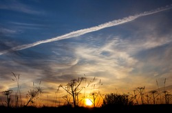 Beautiful bright sunset.