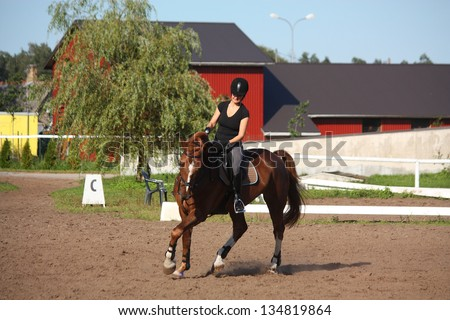 Beautiful brunette woman riding (trotting) chestnut horse in summer