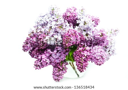 Beautiful Bunch of Lilac in the Vase #136518434