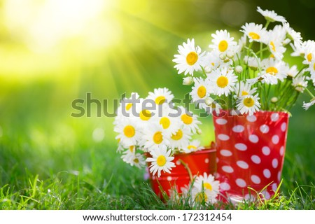 Beautiful bunch of spring flowers in red rubber boots