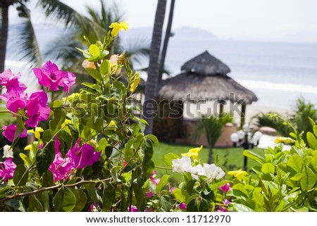 Beautiful Cabana surrounded by flowers and ocean