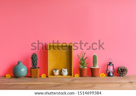 Beautiful  cactus,wooden  shelf,simulated  owl  and  pine  cone  on  wood  table  with  pink  background