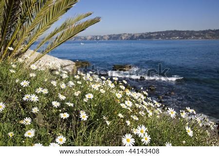 Beautiful California coastline in La Jolla with the cliffs in the background