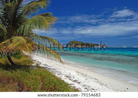 Beautiful calm beach on Tobago Cays