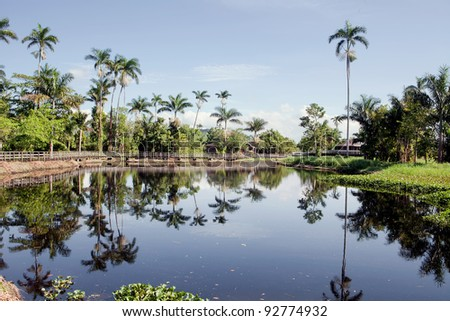 Beautiful calm lake in Jamaica - stock photo