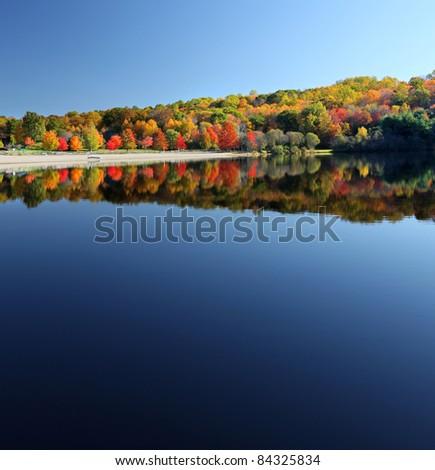 Beautiful calm lake in the fall reflecting trees #84325834