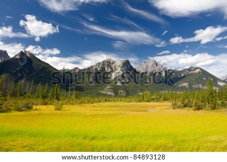 Beautiful Canadian Landscape: Swamp, Rocky Mountains and Cloudy Sky. Photo is taken in Jasper National Park, Alberta, Canada
