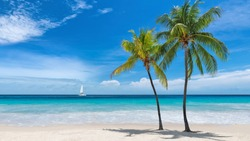 Beautiful Caribbean beach with palm trees and a sailing boat in blue sea on Paradise island.