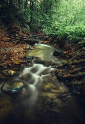 Beautiful cascaded stream (creek) with stones on foreground in dark and moody forest. Small river in deep forest streaming throught the valley - vertical photo.