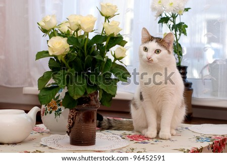 Beautiful cat sitting on the table near to vase with the white roses