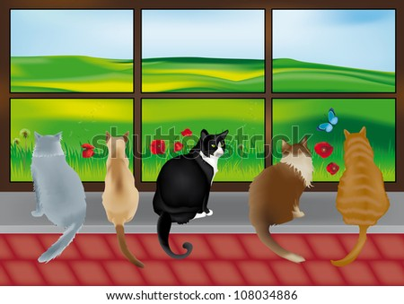 Beautiful 5 cats looking out of the glass window with countryside scene