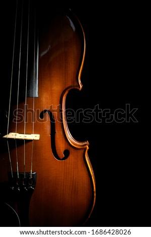 Beautiful classic wooden violin on black background Stock fotó ©