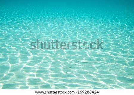 Stock Photo Beautiful clear underwater surface.