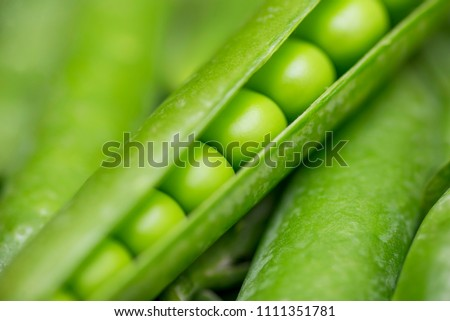 Beautiful close up of green fresh peas and pea pods. Healthy food
