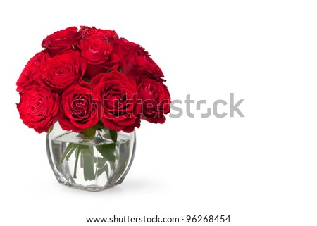 beautiful close-up red rose over white background - stock photo