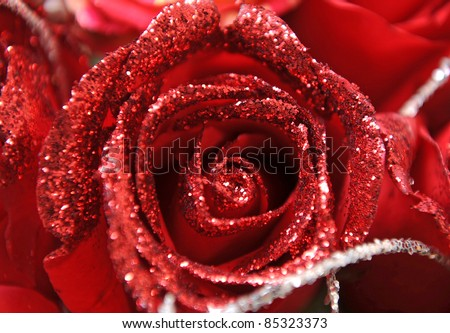 beautiful close up Red rose with diamond