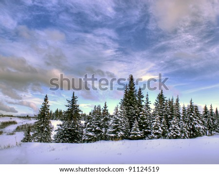 Beautiful cloud patterns on an Alaskan winter day with spruce trees and snow.