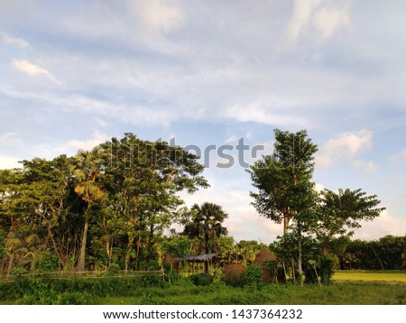 Beautiful cloudy blue sky with the nature of bangladeshi village area.