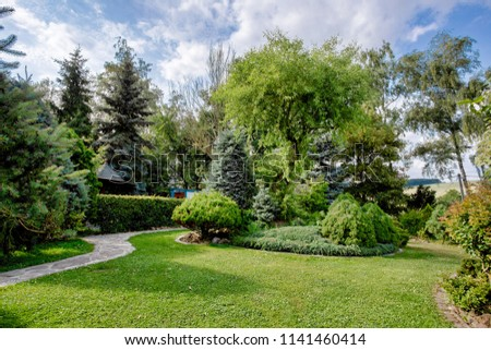 Beautiful colored summer garden, with conifer trees, green grass and evening sun. Gardening concept with blue sky