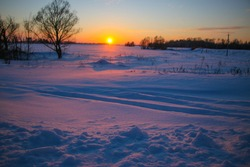 beautiful colored Sunset winter landscape with snow-covered field in purple and pink colors. Silhouettes of trees and shiny snow.