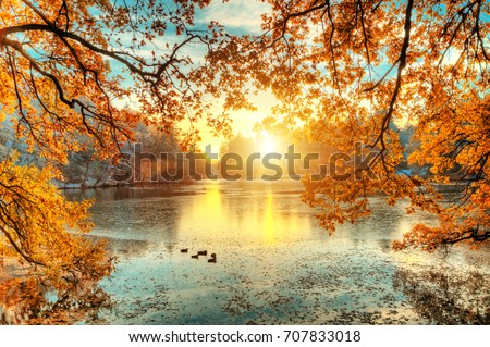 Beautiful colored trees with lake in autumn, landscape photography. Late autumn and early winter period. Outdoor and nature.