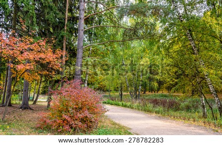 Beautiful colorful autumn forest in park #278782283