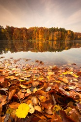 Beautiful, colorful autumn lake. Pomerania, Poland