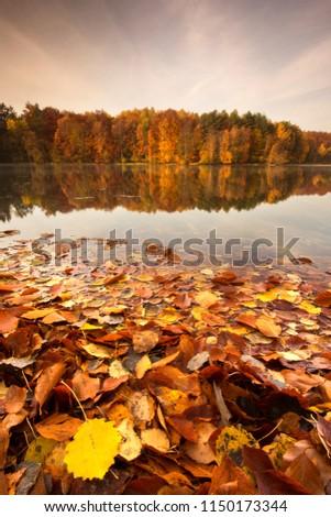 Beautiful, colorful autumn lake. Pomerania, Poland