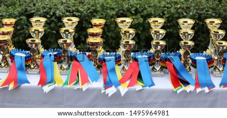 Beautiful colorful awards for the winners of the race #1495964981