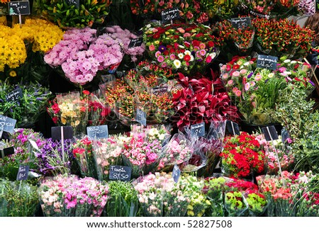 stock-photo-beautiful-colorful-flowers-in-flower-shop-52827508.jpg