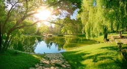 Beautiful colorful summer spring natural landscape with a lake in Park surrounded by green foliage of trees in sunlight and stone path in foreground.