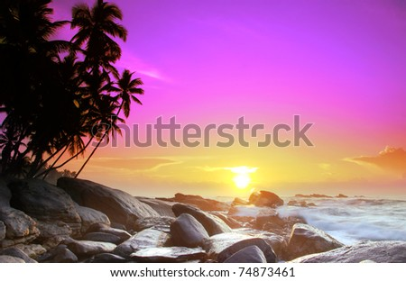 Beautiful colorful sunrise over sea and boulders seen under the palms on Sri Lanka - stock photo