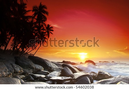 Beautiful colorful sunset over sea and boulders seen under the palms on Sri Lanka